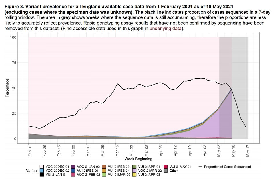 National data also shows how quickly the Indian variant (purple) has spread, making up around half of all new cases reported across the country. The Kent variant is shaded pink. The proportion of cases being sequenced is shown by the black line